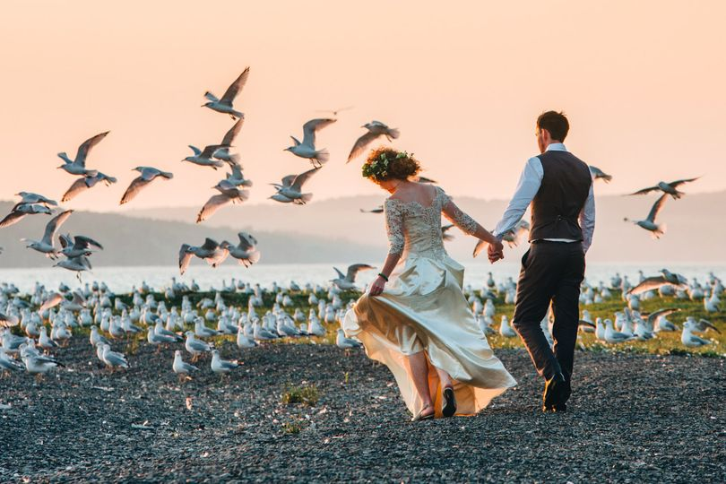 Among the gulls
