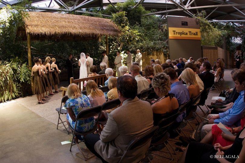 Tropics Wedding