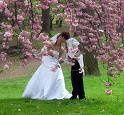 Tmx 1254875502232 Images2 Elmont wedding planner