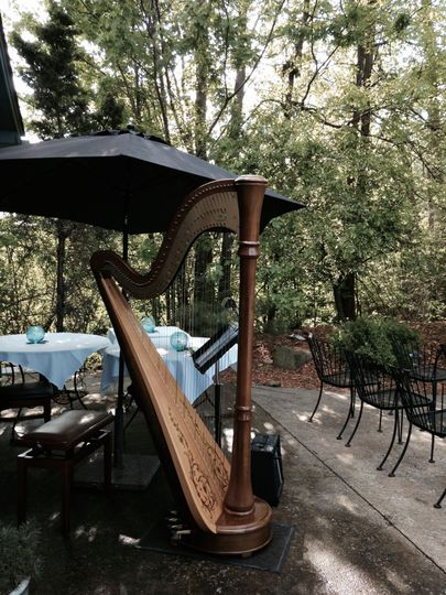 Harp outdoors