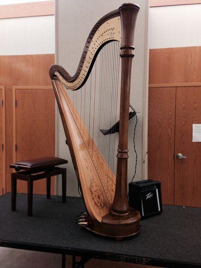Harp on stage