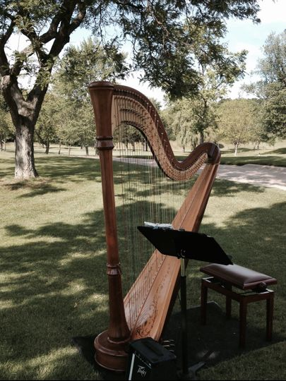 Harp in a park
