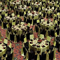Tmx 1329150203526 Lime Seattle wedding rental