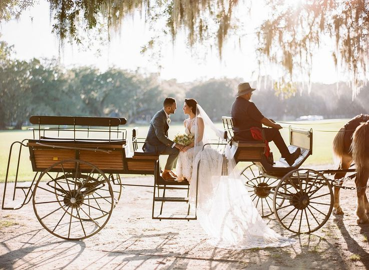 Fairy tale carriage ride