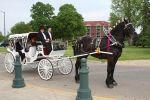 Cinderella Carriage LLC image