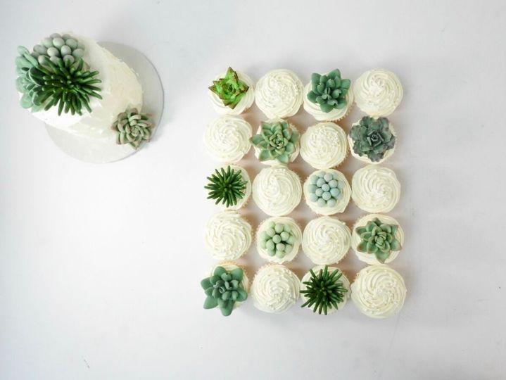 succulents2 51 31452 1564240214