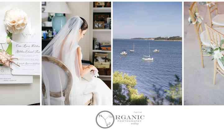 Organic Photography Cape Cod