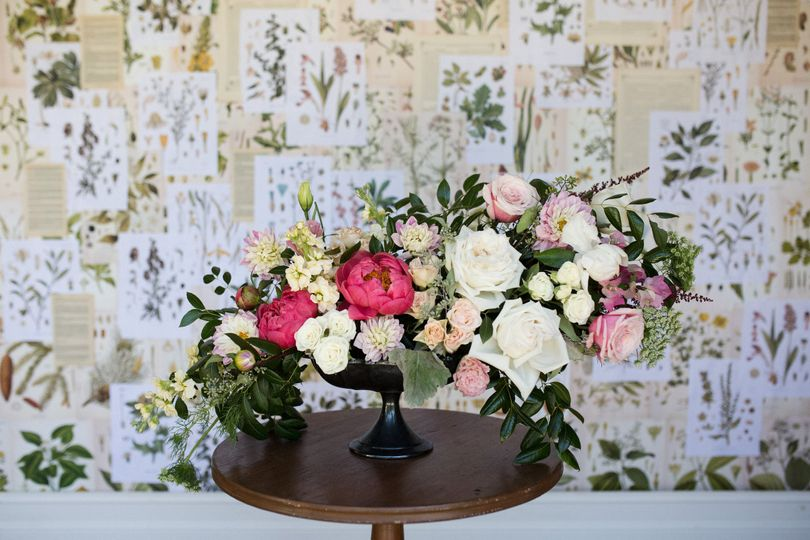 Kaleidoscope Flowers and Botanicals