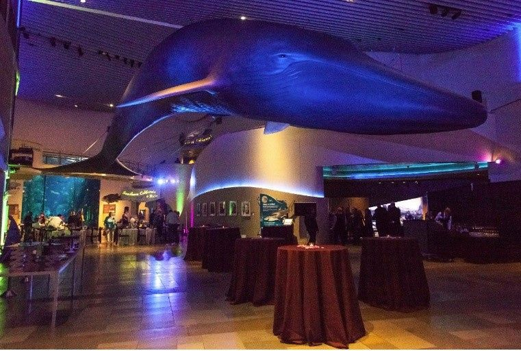 Aquarium Of The Pacific Events Image Gallery HCPR