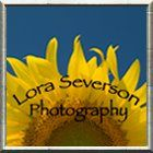 LoraSeversonPhotography