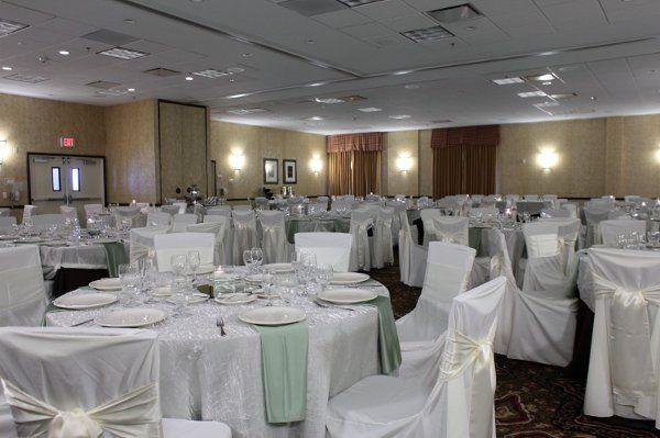 Butler rents inc event rentals denver co weddingwire 800x800 1310066900503 16 junglespirit Images