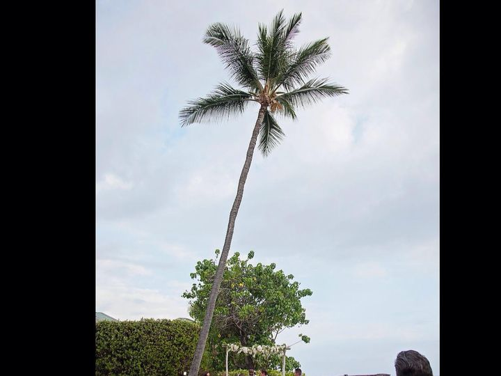 Tmx 1490753257065 Untitled Waikoloa wedding planner