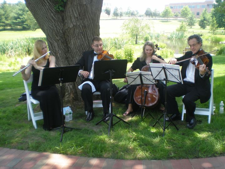 String Quartet at Outdoor Wedding