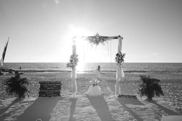 Tmx 1450402119622 A32a9592 M 1 Oldsmar, Florida wedding florist