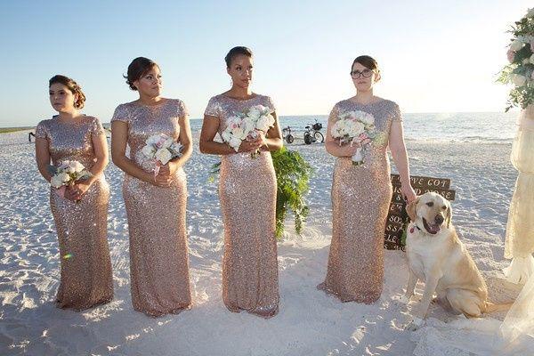 Tmx 1450402131677 A32a9662 M Oldsmar, Florida wedding florist