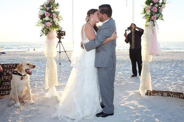 Tmx 1450402144480 A32a9719 M 1 Oldsmar, Florida wedding florist