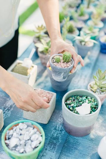 Rock Toppings for your guests to decorate their potted succulents with.