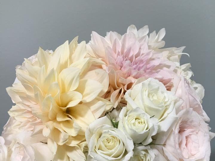 Tmx 1508336010188 Dahlia Utica, Michigan wedding florist