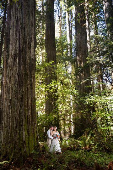 redwood wedding 073e