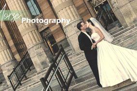 Steve Morse Photography