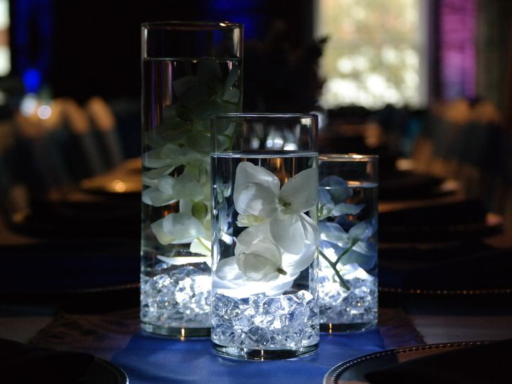 Tmx 1428488662173 Nori 3 Tampa wedding rental