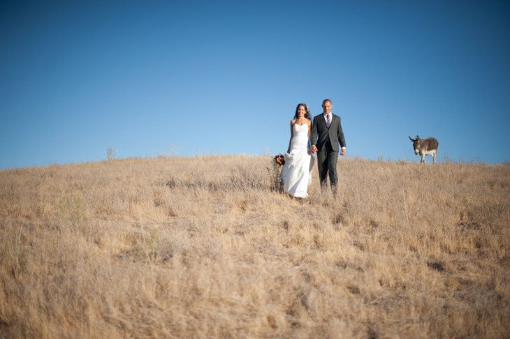 800x800 1413941019615 beautiful wedding photos in atascadero california