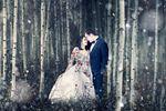 Jeffrey Vincent Photography image
