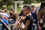 Celebratory Strings image