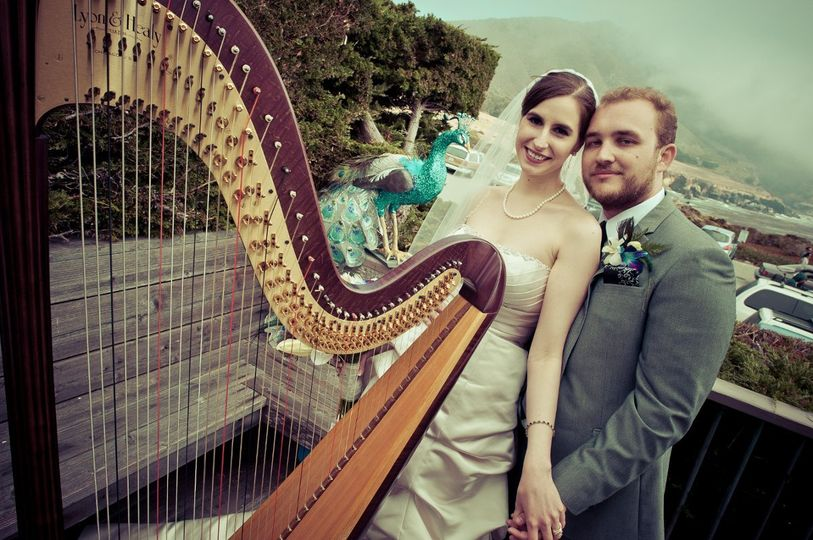 Pamela Pamperin, Harpist