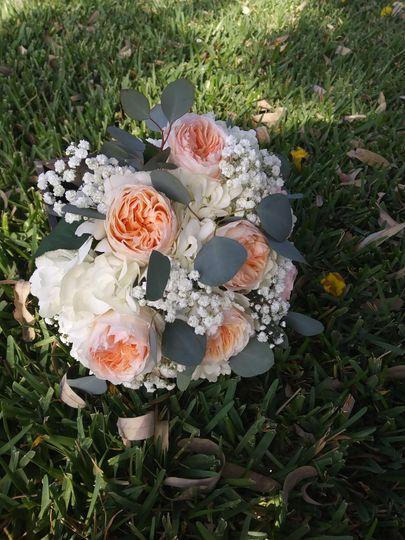 Juliet-peach garden roses