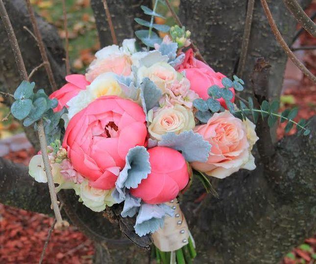 Floral & Photo: Kensington