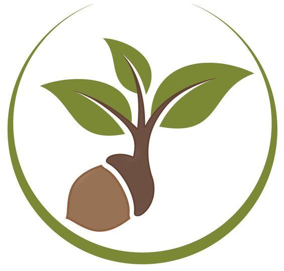 5920511285bd2f5c logo acorn