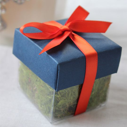 Wedding seed favor with blue lid and orange ribbon. Inside this petite box is a rooted oak tree seed...