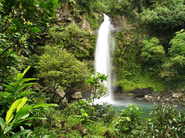 Tmx 1429101800748 Taveuni Waterfalls238 Boca Raton, FL wedding travel