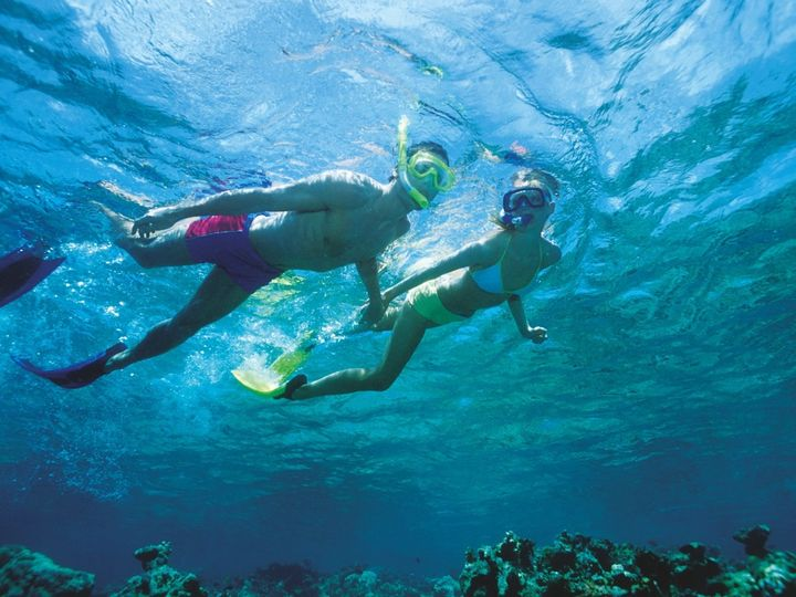 Tmx 1429102207437 Snorkelling In Crystal Clear Warm Waters52240 Delray Beach wedding travel