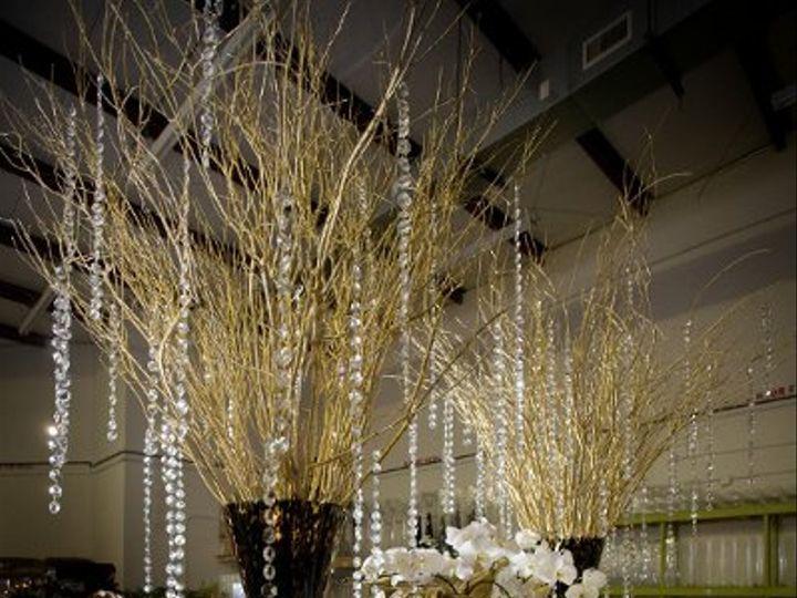 Tmx 1278003546428 20090225extravaganza11 Raleigh wedding florist