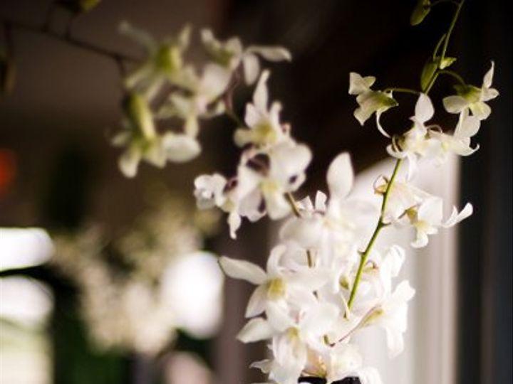 Tmx 1278007446178 Ckw0544 Raleigh wedding florist