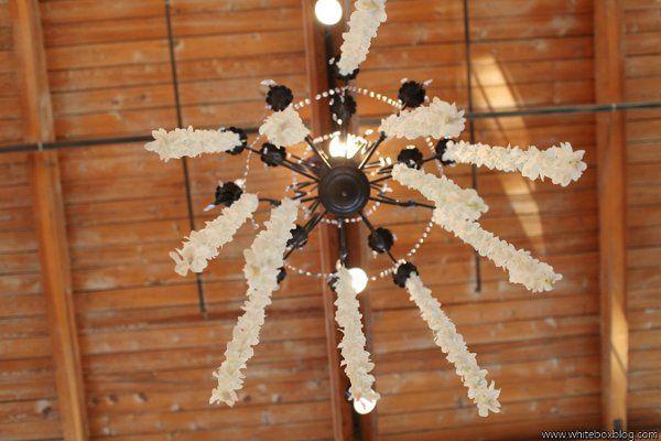 Tmx 1327591193856 Lewischewningwww.whiteboxblog.combethtaylorwedding04582low Raleigh wedding florist