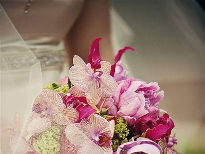 Tmx 1327591438856 25805620978715238966913741205962717950064929941o Raleigh wedding florist
