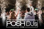 POSH DJs image