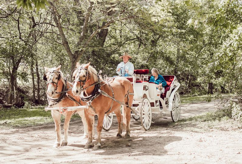 Horse and carriage options