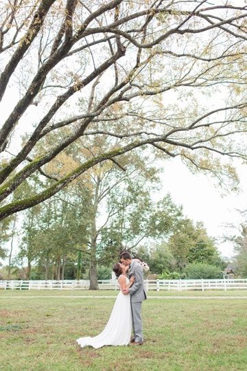 Beneath outstretched tree branches (Kelley Stinson Photography)