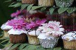Tmx 1337643651070 Somuchfun1 Temecula wedding cake