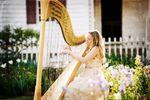 Diana Dunnavant, harpist image