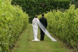 8b423fd95e961e45 1242848323900 Wedding1