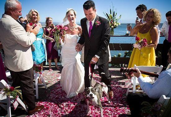 Tmx 1233596942213 Jp 0001 Greenfield wedding photography