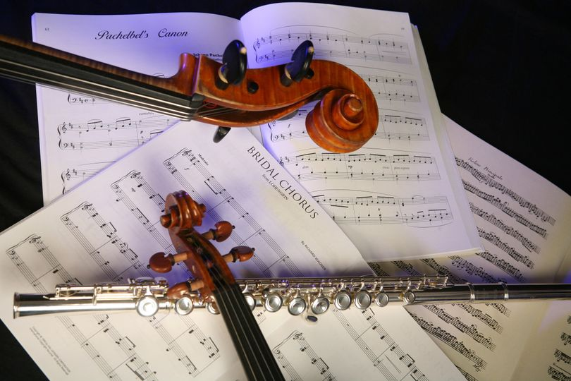 Elegant music for your wedding. Not sure what you want?  We have years of experience and can help...