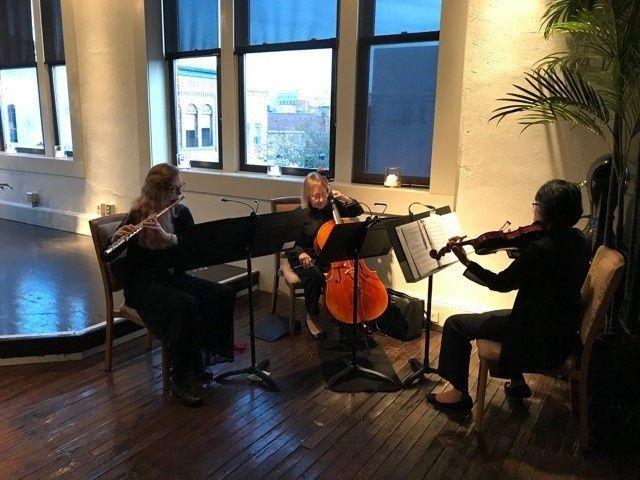 Harmonium Players, wedding and reception at The Martinsborough, Greenville, NC