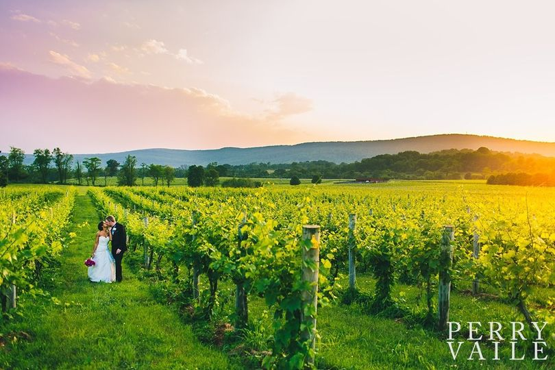Breaux vineyards venue purcellville va weddingwire
