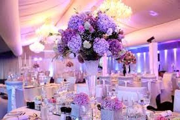 fea40f72c6272082 Elegance and Style Weddings